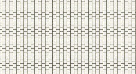 ビース白図
